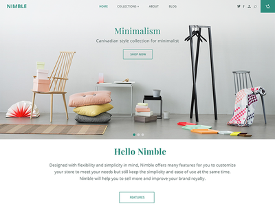 e-commerce Theme design shop front-store store ecommerce shopify