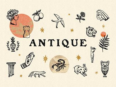 Antique Bundle tiger antique vintage logo design clipart neutral boho illustration vector