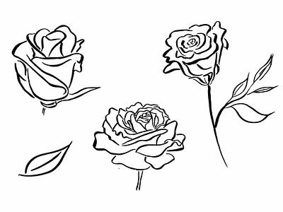 Rose illustrations 2 vector ink drawing design graphic artist illustration branding