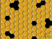 Random Design - Honey Bee Cells
