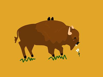 Bison's Life illustrator illustrationoftheday minimal illustration