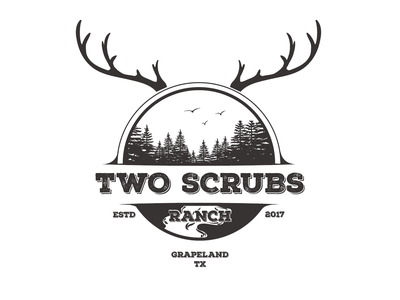 Another concept for Two scrubs Ranch minimal illustration design creative vector logo branding vintage logo vintage texas western pines deer old school classic logo classic graphic design logo design agricultural ranch