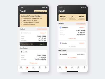 A Loan App for Premium Members exclusive member upgrade bank money credit premium grey white uidesign flat icon ui app loan