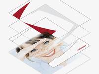 Netviewer Corporate Design