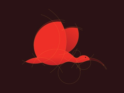 Guara guara ibis bird logo grid red mark wing flight branding design figure