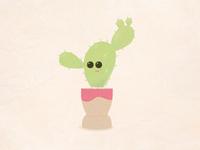 Taco Head Cactus