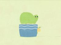 Balding Cactus