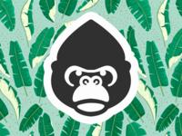 Gorilla 🦍