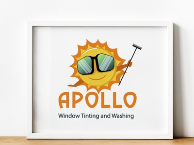 Window tinting & Washing