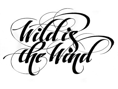 Wildwind2