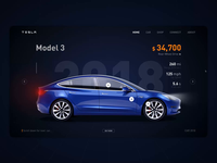 Tesla Car Web Design