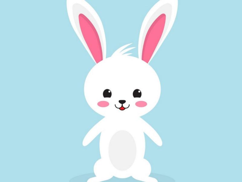 Illustration adobeaftereffects adobe logoinspiration illustrator illustration logodesigner logodesign creativity creative love animal rabbit character special