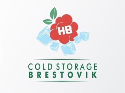 Cold Storage Brestovik logo