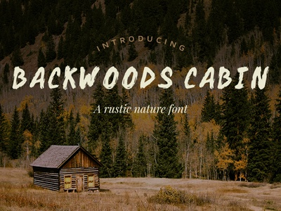 Backwoods Cabin Font cabin woods outdoors nature rustic brush handmade lettering typography font