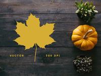Autumn Leaf Silhouettes + Stock Photos
