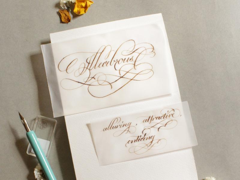 Illecebrous pointedpencalligraphy calligraphywithflourishing calligraphy priyankacallidesigns
