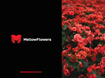 Mellow Flowers logo for flower boutique red boutique flowers branding design minimal identity typography logotype branding logo brand identity brand design