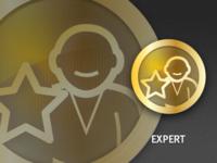 Expert Badge