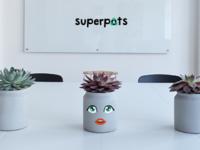 Plantido Superpots