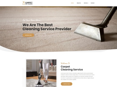 Carpet Dry Cleaner Website Design web  design ux ui symplelogix design