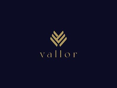 vallor w mark v mark w v logo mark premium icon design icon identity graphic design creative  design minimal logo branding