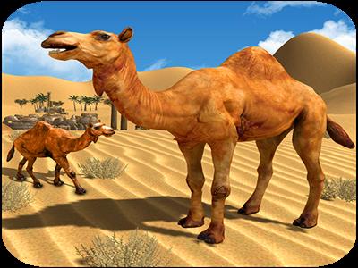 Camel Family Life Simulator by Tony Grant on Dribbble