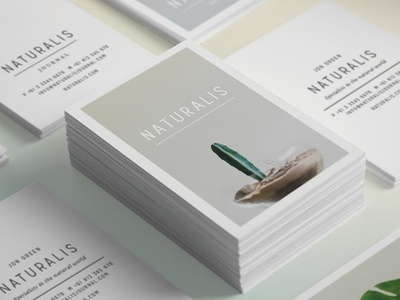 NATURALIS Business Card Template