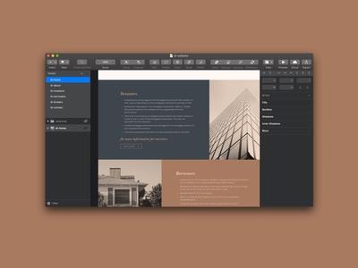 Baccus | Website WIP dark mode sketch design finance typography type logo design logo graphic design ux ui web design branding brand
