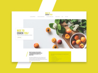 Nice To Coach You - Website Homepage