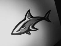 Shark concept sketch