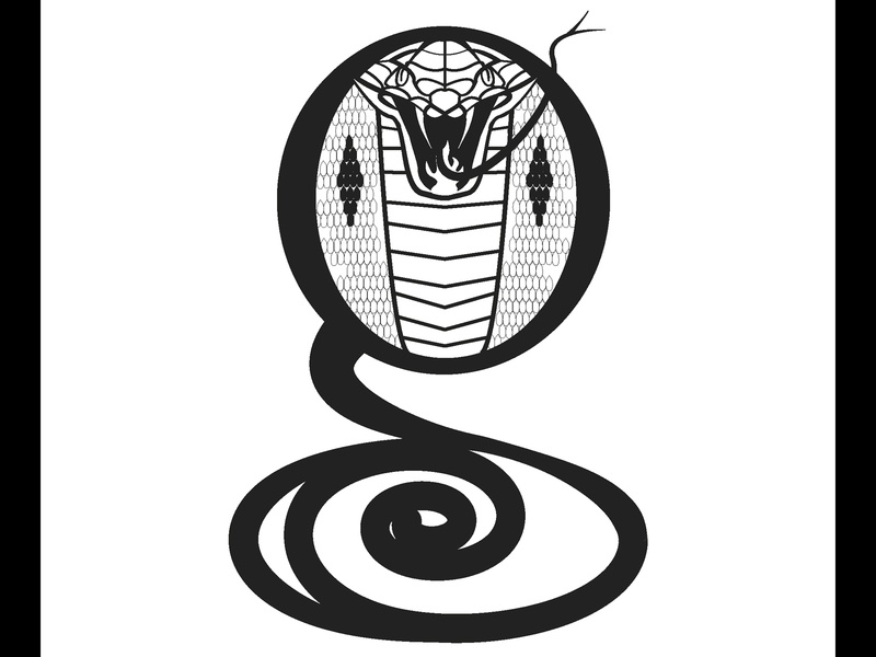 Revised Letter G - snake colbra hudsonvalley albanyny graphicdesign vector typography lettering typography art letterg 36daysoftype