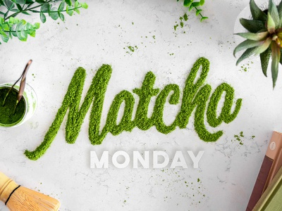 EggHaus Matcha Monday food typography photography egghaus monday matcha
