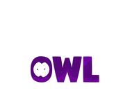 Owl typo art