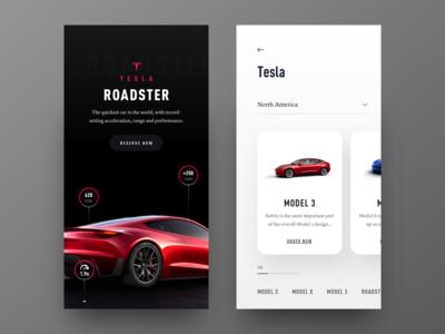 Rent Tesla - iOS App