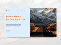Concept Design For Travel Management Company Website