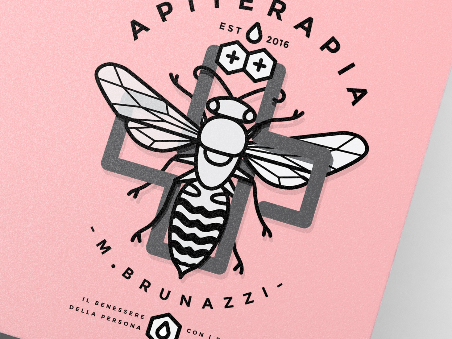http://rubrastudio.com/apiterapia-brunazzi/ design icon branding brand agency typography logo brandidentity infographic illustration design