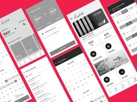 Airline App Wireframes