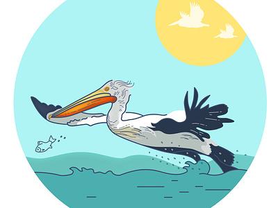 A little of pelicans for the project Pelican Way Of LIFE stickers design fish sea bird pelicans pelican logo branding vector illustration