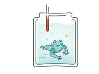 Cognitive Bias, Boiling Frog