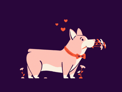 Valentine Corgi