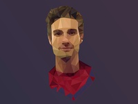 My polygon portrait