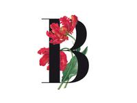 B - Rose