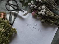 Botanica Florist Branding