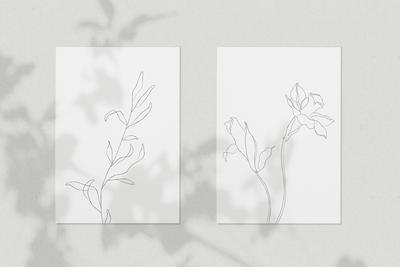Botanical Line Sketches