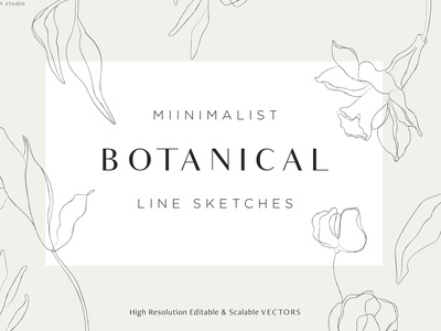 Minimalist Botanical Line Sketches