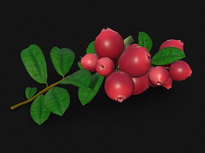 Lingonberry nature food plants blender sketchfab 3d lingonberry