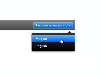 Language Switcher language ui switcher popover dark button
