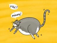 Eris the Cat