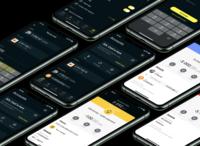 SOL Wallet screens wallet sol redesign figma