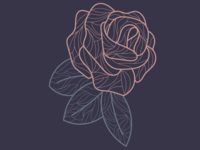 Lined Rose